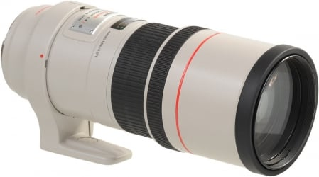 Canon EF 300 mm f/4 L IS USM 2