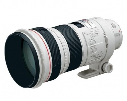 Canon EF 300mm f/2.8 L IS II USM 1