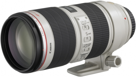 Canon 100-400 mm f/4.5-5.6 L IS USM 1