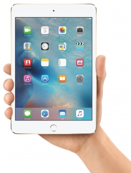 Apple iPad mini 4 14