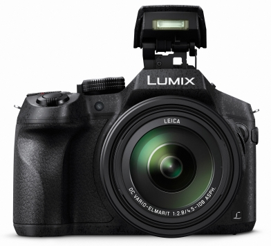 Panasonic LUMIX DMC-FZ300 (FZ330) 3
