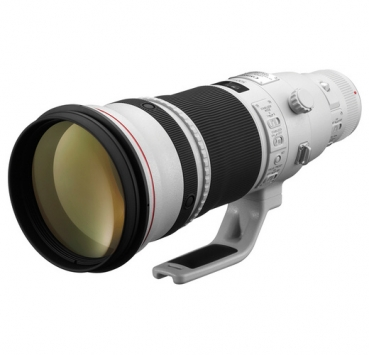 Canon EF 500mm f/4.0 L IS II USM 1