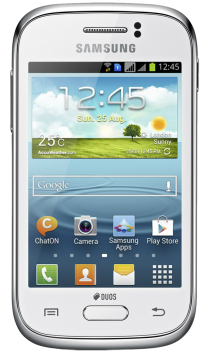 Samsung Galaxy Young 1