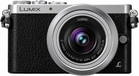 Panasonic LUMIX DMC-GM1 1
