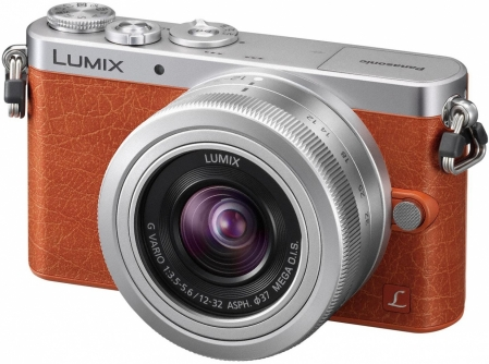 Panasonic LUMIX DMC-GM1 5