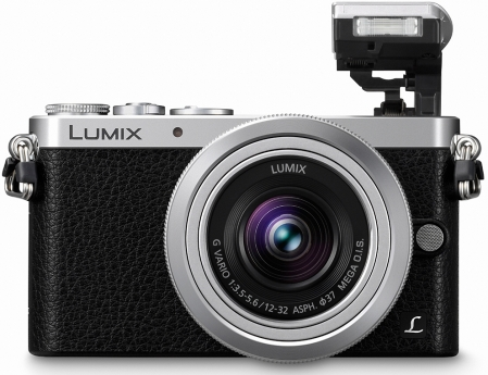 Panasonic LUMIX DMC-GM1 9