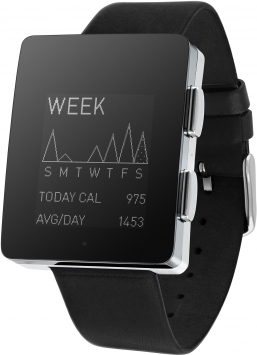 Wellograph Watch 1