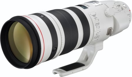 Canon EF 200-400mm f/4 L IS USM Extender 1.4x 1