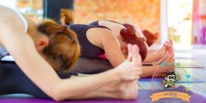 Vinyasa flow joga v centre emJOY