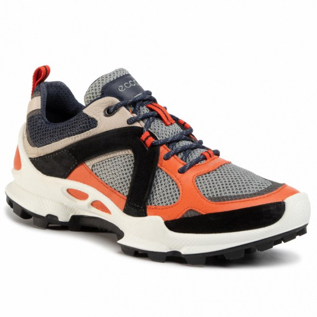 Sneakersy ECCO - Biom C-Trail M 80310451829 Fire/Gravel/Wild Dove