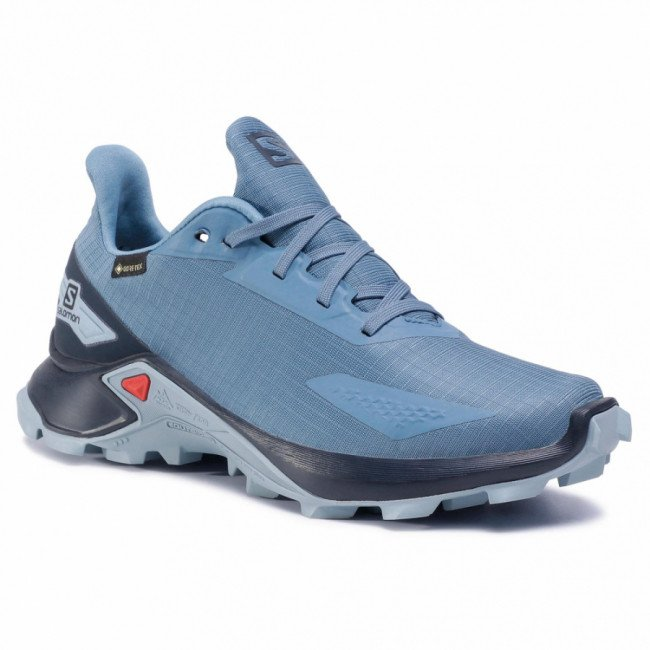 Topánky SALOMON - Alphacross Blast Gtx W 411064 20 V0 Copen Blue/Navy Blazer/Ashley Blue