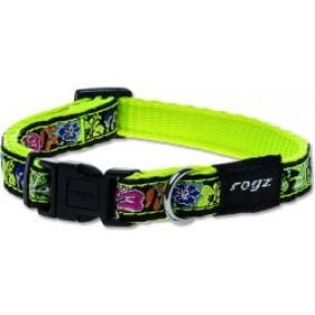 Rogz Obojek Fancy Dress Dayglo Floral