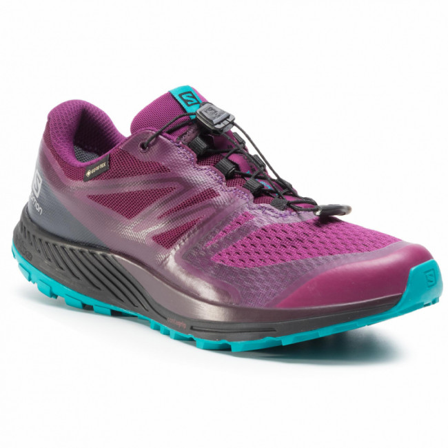 Topánky SALOMON - Sense Escape 2 Gtx W GORE-TEX 407924 25 W0 Dark Purple/Black/Tile Blue