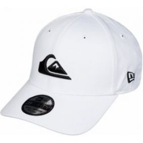 Quiksilver Mountain & Wave Colors New Era 39Thirty