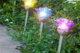 Solárna Lampa Flower Oh My Home