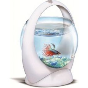 Tetra Betta Ring akvárium 1,8 l