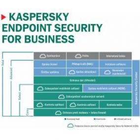 Kaspersky Endpoint ADVANCED 20-24 lic. 36 měs.