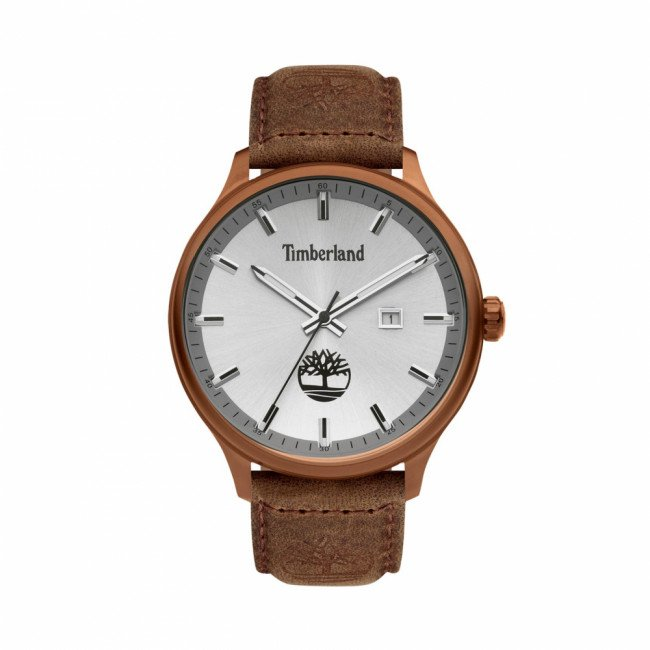Hodinky TIMBERLAND - Allendalle II TDWGB2102203  Brown/Gold