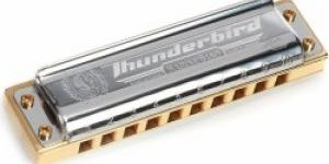 Hohner Marine Band Thunderbird D-major, low octave
