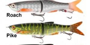 Savage Gear 3D Bleak Glide Swimmer Roach 13,5cm